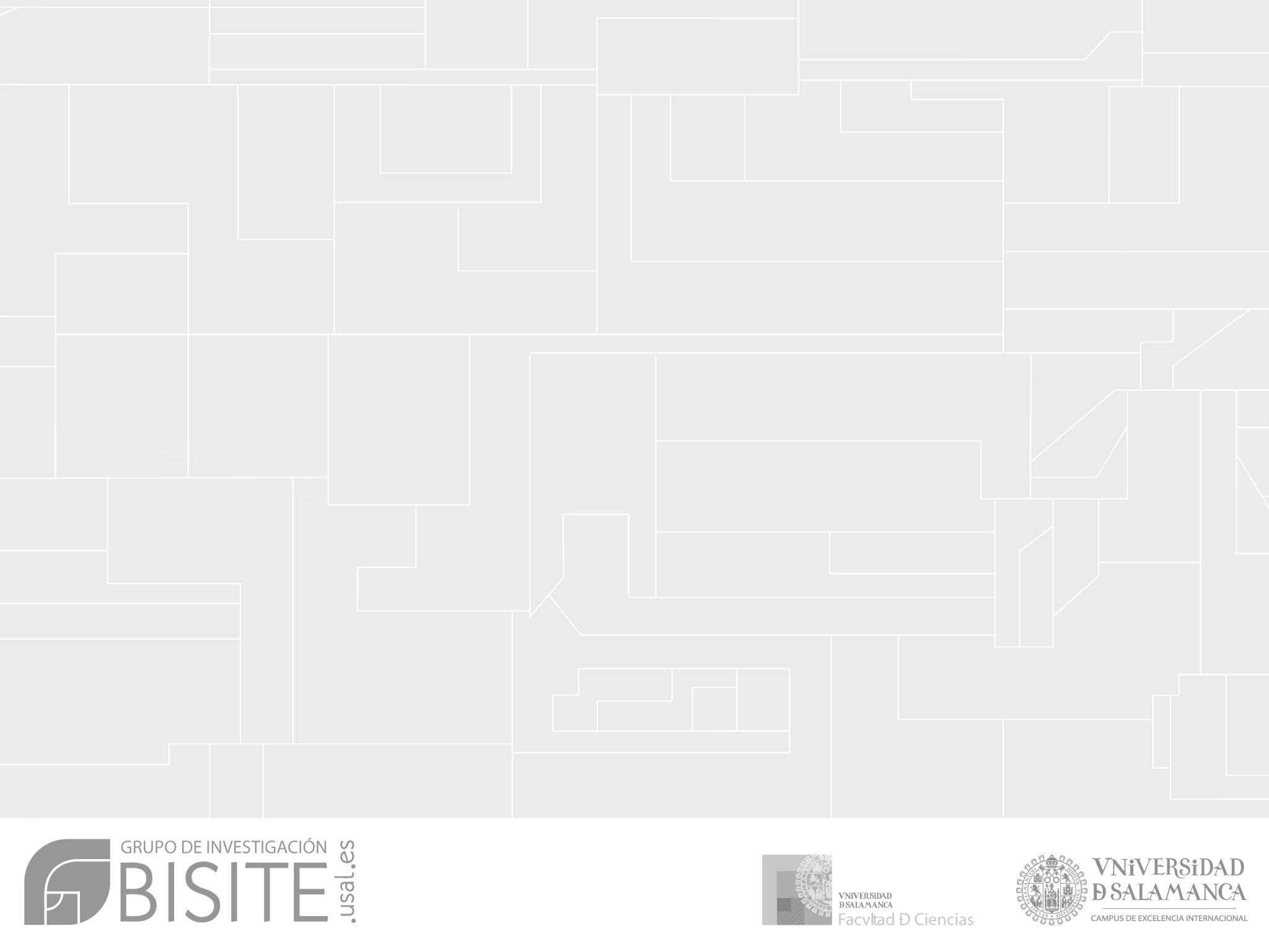 Identidad gráfica | Grupo de investigación BISITE | University of ...