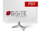 Bisite Presentation