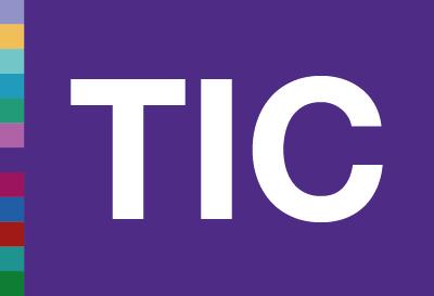 sistemas-informacion-tic-formacion-bisite