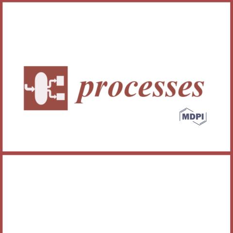 revista_processes